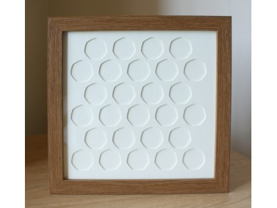 27 UK (Old Coin) 50p Coin Frame
